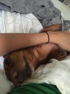 Cuddling's my favorite